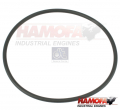MERCEDES O-RING 0009973445 NEW