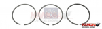 IVECO PISTON RING KIT 504033988S12 NEW