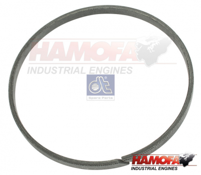 DAF SEAL RING 689198 NEW